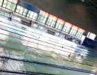 广州学游泳,找我教,包教会。