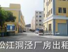 松江洞泾工业园标准仓库出租