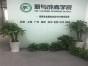 北京免联考emba班
