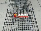 新型塑料养殖围网 双向塑料格栅 厂家直销