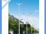 新型大功率路灯,双臂灯,LDSB-0130型,高7-13米,厂家