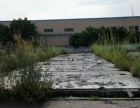 南庄紫洞路段总部基地附近有8000方空地出租