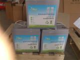 口碑好的免维护电池市场价格6-EVF-120免维护电池