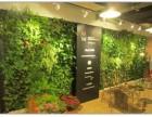 北京植物墙定做植物墙批发价格