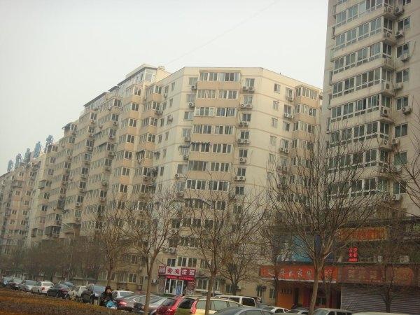 西单 宣武门 椿树园 精美一居出租 宣武门东大街 和平门