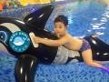 湖州 宝宝游泳 公布贝贝鲸开业时间
