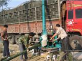 新型柴油竹子切片机/柴油树根粉碎机厂家报价