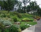 西湖区绿化养护公司(易达园林)