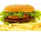 奧多姆漢堡投資費用多少?