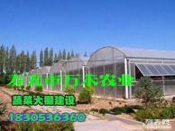 温室大棚建设技术 设计 哪家强 首选寿光市万禾农业