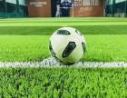 合肥蜀山区动享运动中心精英馆足球,室内足球