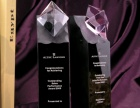 奖杯奖牌定制刻字荣誉证书最快1小时出货市内免费送货