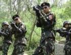 中山专业亲子团队承接亲子活动班团活动奇彩中国训练
