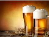 广州啤酒进口操作流程时间及资料