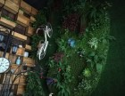 绿植墙 店面装饰升级 个性花艺软装设计制作