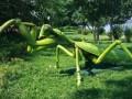 昆虫展 仿真昆虫租赁 昆虫展览 仿真恐龙租赁 仿真昆虫展览