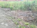 宝山工业园区5亩10亩20亩土地出租