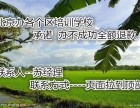 审批北京民办英语教育培训需要提供哪些手续