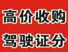 惠东驾驶证业务咨询