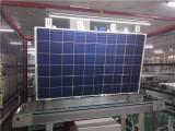 厂家批发250W多晶硅太阳能电池板