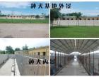 郑州 家养繁殖出售纯种雪纳瑞 上门挑选签协议
