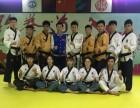 信丰跆拳道盛世精英跆拳道教育