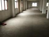 沙河源古柏5組245平方倉庫便宜出租