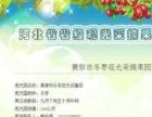 黄骅冬枣采摘园欢迎您
