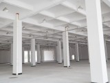 市区仅缺全新独幢5万方高标准仓库 提供仓储物流服务