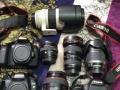 佳能 单反相机 5D 单机