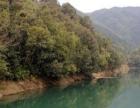 天景山粤凰生态科技园一日体检游