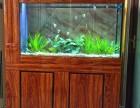 烤漆玻璃鱼缸 金刚玻璃鱼缸 保定哪里定做鱼缸