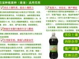 广东广西茶叶种植em菌液叶面肥制作 灌跟专用EM菌种
