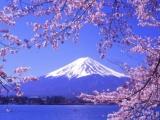 西安日语翻译公司-领事馆指定翻译机构