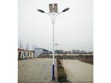 衡水太阳能路灯-销量好的太阳能路灯品牌推荐