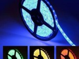 厂家直销 D灯带 超高亮装饰LED软灯条