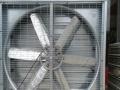 白铁工程 环保空调 负压风机 降温水帘
