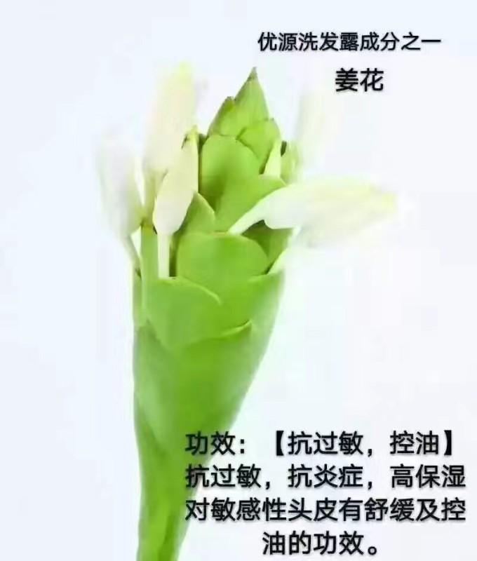 优源国际官方联合创始人郭蓉 邀您一起创业