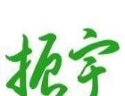 正宗霍山石斛原种基地—振宇霍山石斛—大别山野生种源