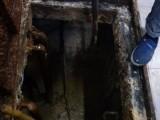 溧水洪蓝化粪池清理,隔油池清淤,污泥压榨甩干绿色环保