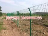 津安筛网:重庆护栏网,养殖网,园林围网,高速护栏网