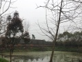 荆州市监利县荒湖农场养殖基地对外出租
