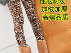 工厂直销 秋冬款女装新款加绒保暖裤豹纹大码加厚打底裤长裤