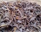 沈阳化工学院废铁回收废钢回收