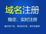 龙湖专业的网站建设团队