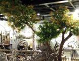 滨州仿真树椰子树
