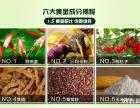 血钻野燕麦沂源县,庆元县药店能买到吗?