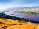 沙湖,影视城,贺兰山岩画,枸杞观光园一日游