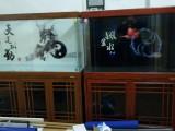 上海卖鱼缸的地方,上海锦鲤鱼批发,上海鱼缸专卖,