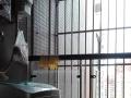 民兴北苑 1室1厅 52平米 简单装修 年付